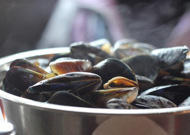 mussels-811759_1920